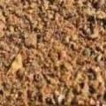 قیمت فروش عمده کنجاله زیتون غنی شده برای خوراک دام