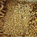 فروش مستقیم کنجاله سویا برزیل و آرژانتین از بندر امام
